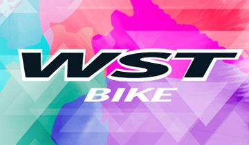 BicicletasWST BIKE